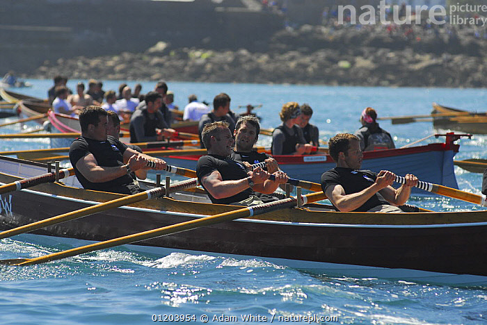 """Flushing and Mylor men's crew in """"Penarrow"""" racing at the 19th World Pilot Gig Championships, Isles of Scilly, May 2008  ,  BOATS,CLINKER,COASTS,CORNISH,CORNWALL,CREWS,EUROPE,EVENTS,GIGS,MID SHOT,MS,OPEN BOATS,PEOPLE,RACES,RACING,ROWING,UK,WOODEN,UNITED KINGDOM,BRITISH,ENGLAND, OPEN-BOATS  , United Kingdom,TEAMWORK,determination,CONCEPTS, OPEN-BOATS  , United Kingdom, OPEN-BOATS  , United Kingdom  ,  Adam White"""