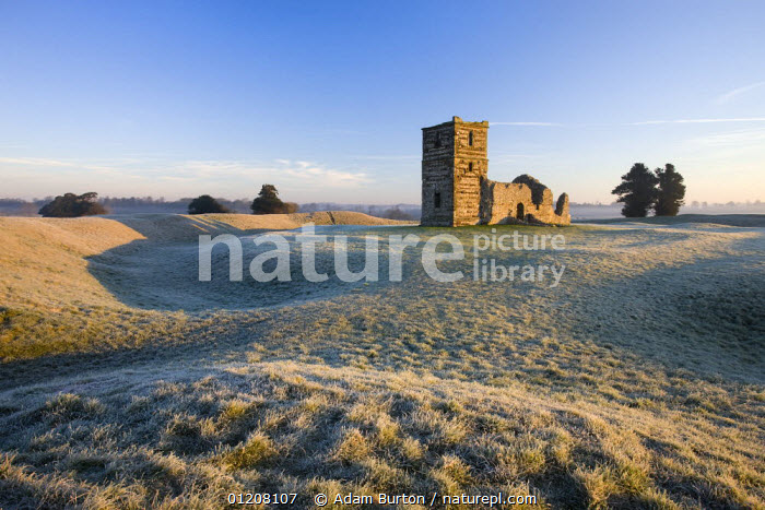 Ruins of Knowlton Church on frosty winters morning, Dorset, England  ,  BUILDINGS,CHURCHES,EUROPE,FROST,LANDSCAPES,OLD,UK,WINTER,United Kingdom,Weather,British,ENGLAND  ,  Adam Burton