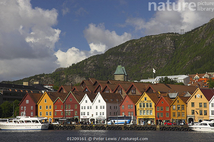 Bryggen in Bergen, with wooden buildings facing the quay. UNESCO World Heritage Site, Norway  ,  BOATS,BUILDINGS,CITIES,COASTS,COLOURFUL,EUROPE,fjord,fjords,HARBOURS,LANDSCAPES,MOUNTAINS,NORWAY,SCANDINAVIA,shops,TOWNS,WOODEN, Scandinavia, Scandinavia, Scandinavia, Scandinavia, Scandinavia, Scandinavia  ,  Peter Lewis