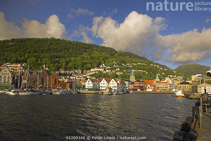 The City of Bergen accross the water, Norway  ,  BOATS,CITIES,COASTS,EUROPE,HARBOURS,hills,LANDSCAPES,SCANDINAVIA, Scandinavia, Scandinavia, Scandinavia, Scandinavia, Scandinavia, Scandinavia  ,  Peter Lewis