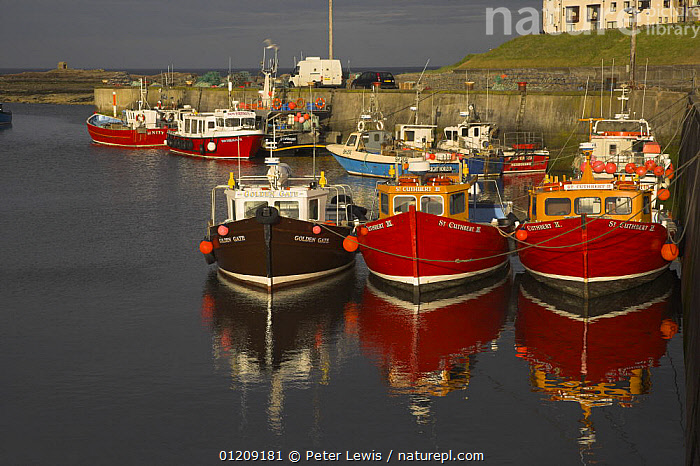 Boat reflections in harbour, Northumberland  ,  BOATS,CALM,COASTS,EUROPE,HARBOURS,LANDSCAPES,MOORED,REFLECTIONS,Seahouses,UK, United Kingdom,ENGLAND, United Kingdom, United Kingdom, United Kingdom, United Kingdom, United Kingdom  ,  Peter Lewis