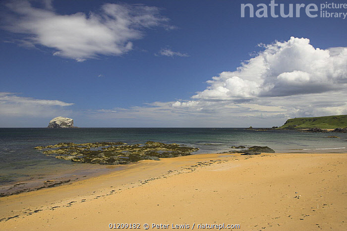Bass Rock viewed from beach in North Berwick, Scotland  ,  BEACHES,COASTS,EUROPE,LANDSCAPES,ROCKS,UK, United Kingdom, United Kingdom, United Kingdom, United Kingdom, United Kingdom, United Kingdom  ,  Peter Lewis