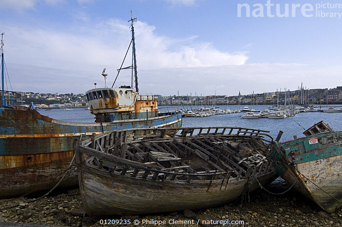 Old fishing boats in the harbour of Camaret, Brittany, France. May 2008.  ,  BOATS,COASTS,EUROPE,FRANCE,HARBOUR,LANDSCAPES,TOWNS  ,  Philippe Clement