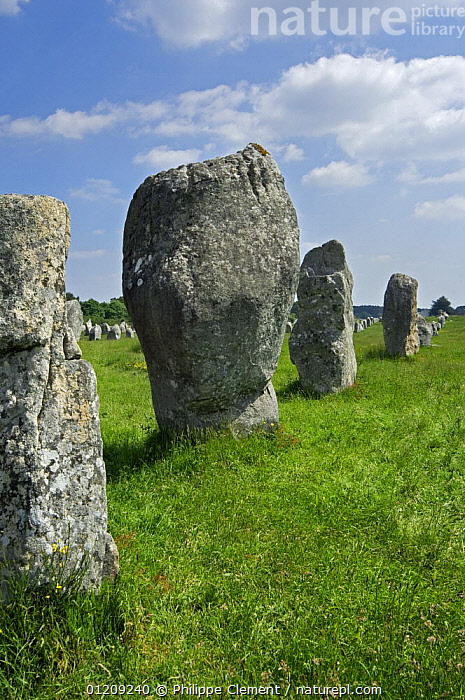 Standing stones in the M�nec alignment at Carnac, Brittany, France. May 2008.  ,  ANCIENT,EUROPE,FRANCE,LANDSCAPES,STONE  ,  Philippe Clement