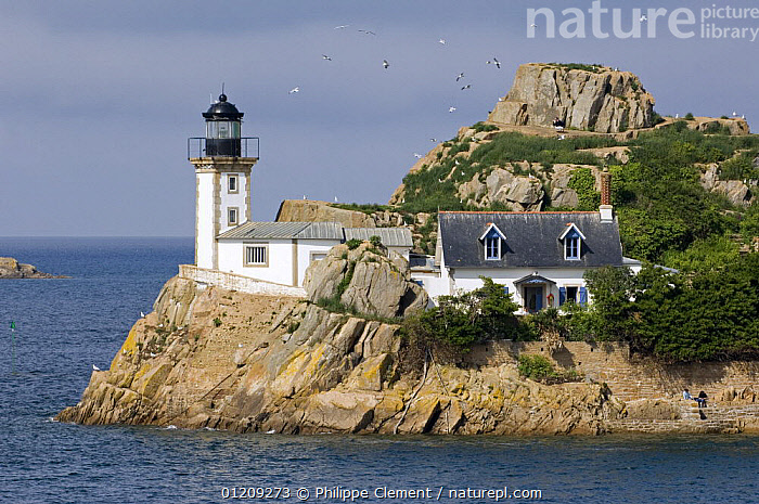 Lighthouse at the Ile Lou�t / Louet island, Carantec, Brittany, France. May 2008.  ,  BUILDINGS,COASTS,EUROPE,FRANCE,LANDSCAPES,LIGHTHOUSES  ,  Philippe Clement