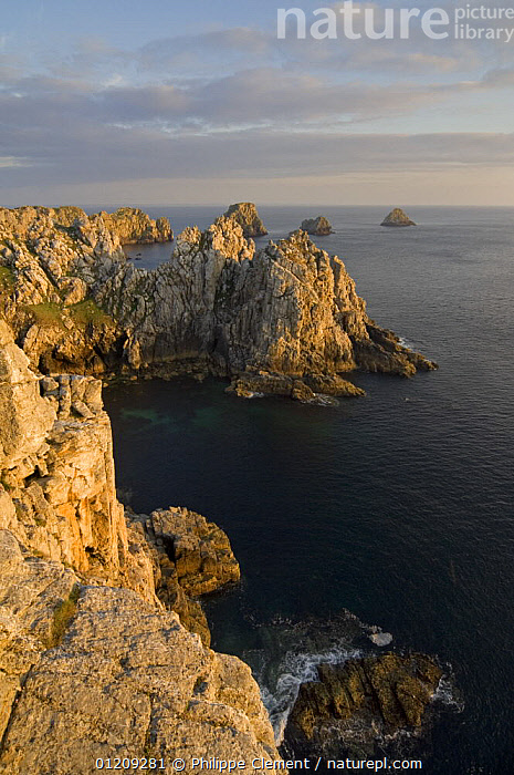 Sea cliffs at Pen Hir at sunset, Brittany, France. May 2008.  ,  ATLANTIC,COASTS,EUROPE,FRANCE,LANDSCAPES,ROCKS,ROCKY,VERTICAL  ,  Philippe Clement