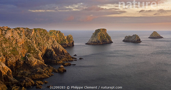 Sea cliffs at Pen Hir at sunset, Brittany, France. May 2008.  ,  ATLANTIC,COASTS,EUROPE,FRANCE,ISLANDS,LANDSCAPES,ROCKS  ,  Philippe Clement