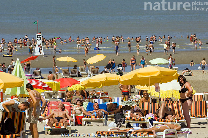 Tourists sunbathing and swimming at the North Sea beach in summer, Blankenberge, Belgium. July 2008.  ,  BEACHES,BELGIUM,EUROPE,HOLIDAYS,MASS,PEOPLE,SUMMER,SUNBATHING,TOURISM,UMBRELLAS,Concepts  ,  Philippe Clement