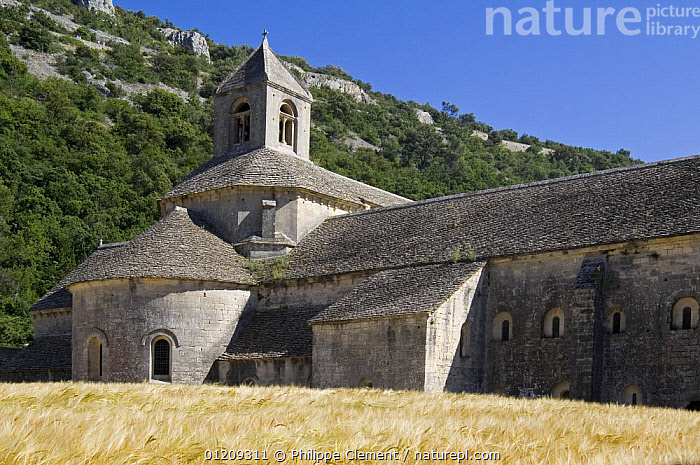 The S�nanque Abbey / Abbaye Notre-Dame de S�nanque, a Cistercian abbey near the village of Gordes in the Vaucluse, Provence, France. June 2008.  ,  BUILDINGS,CHURCHES,FRANCE,LANDSCAPES,Europe  ,  Philippe Clement