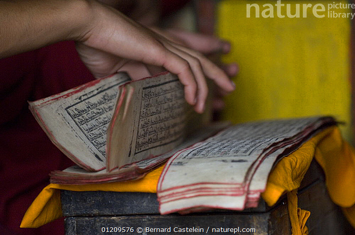 Handling the prayer books in Phodong Monastery, Phodong, Sikkim, India October 2007  ,  ASIA,BOOKS,BUDDHISM,BUDDHIST,HANDS,INDIA,PEOPLE,INDIAN-SUBCONTINENT  ,  Bernard Castelein