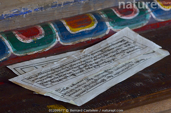 Sacred buddhist scriptures inside Anden Gumpa between Sombare and Hilley, Sikkim, India  ,  ASIA,BUDDHISM,BUDDHIST,INDIA,TRADITIONAL,INDIAN-SUBCONTINENT  ,  Bernard Castelein