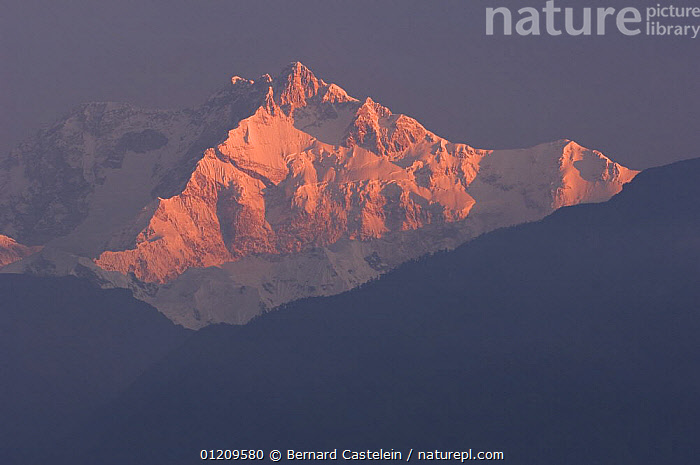 Kanchenjunga seen from Pelling at sunrise, Himalayas, Sikkim, India October 2007  ,  ASIA,BUDDHISM,BUDDHIST,DAWN,INDIA,LANDSCAPES,LIGHT,MOUNTAINS,SNOW,SUNLIGHT,INDIAN-SUBCONTINENT  ,  Bernard Castelein