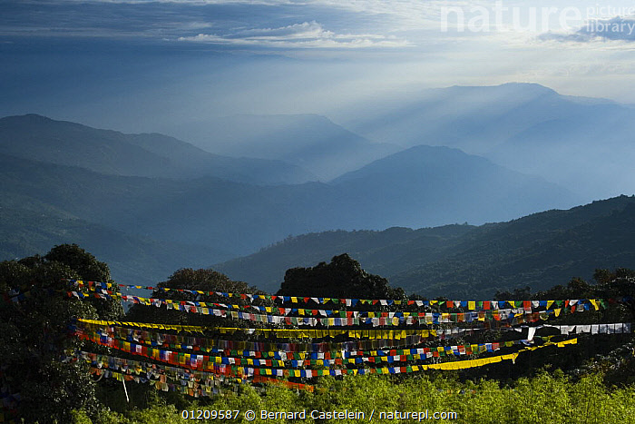 Mountains to the east seen at sunrise from Tiger hill viewpoint, with prayer flags in the foreground, Darjeeling, West Bengel, India October 2007  ,  ASIA,BUDDHISM,BUDDHIST,DAWN,HIMALAYAS,INDIA,LANDSCAPES,SUNLIGHT,SUNRISE,TRADITIONAL  ,  Bernard Castelein