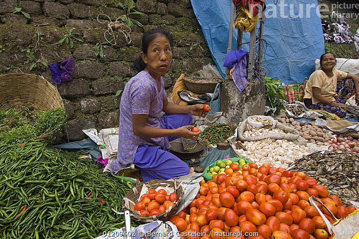 Woman selling vegetables at street market stall, 
