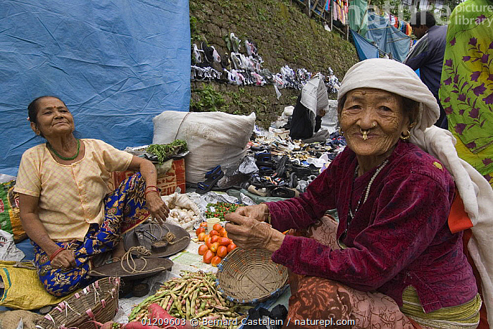 Women selling vegetables at street market stall,  Sombare, West Sikkim, India October 2007  ,  ASIA,FRUIT,INDIA,PEOPLE,TOWNS,TRADE,TRADITIONAL,WOMEN,Plants  ,  Bernard Castelein