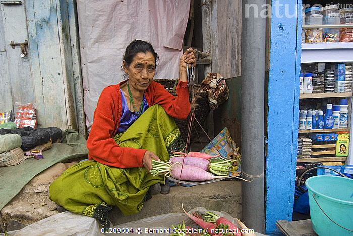 Woman weighing root vegetables at street market,  Sombare, West Sikkim, India October 2007  ,  ASIA,BUDDHISM,BUDDHIST,INDIA,LANDSCAPES,PEOPLE,TOWNS,TRADITIONAL,WOMEN,INDIAN-SUBCONTINENT  ,  Bernard Castelein