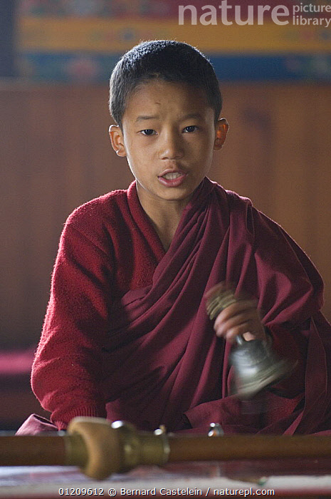Young Buddhist monk during puja, Anden Gumpa, between Sombare and Hilley, West Sikkim, India October 2007  ,  ASIA,BELLS,BUDDHISM,BUDDHIST,CHILDREN,INDIA,PEOPLE,PORTRAITS,TRADITIONAL,VERTICAL  ,  Bernard Castelein