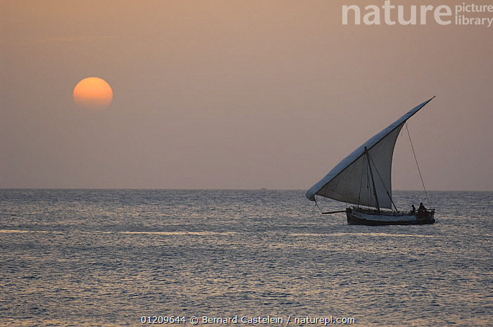 Seascape with Dhow at sunset, Stone Town, Zanzibar, Tanzania  ,  BOATS,DUSK,EAST AFRICA,LANDSCAPES,SAILING,SEA,TRADITIONAL,Africa,EAST-AFRICA  ,  Bernard Castelein