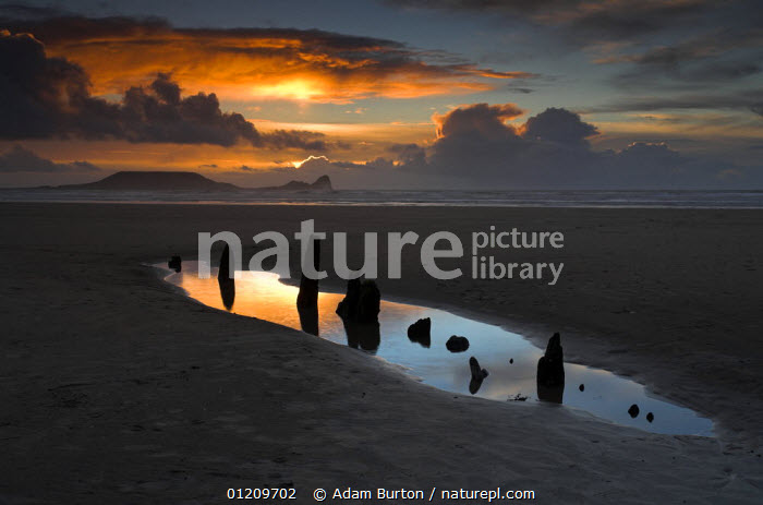 Tidepool and wreck of the Helvetia on Rhossili Bay, with Worm's Head in the background. Gower, Wales  ,  BEACHES,COASTS,EUROPE,LANDSCAPES,PEACEFUL,POOLS,SHIPWRECK,SHIPWRECKS,SUNRISE,SUNSET,UK,WRECKS,United Kingdom,Concepts,British,WALES, United Kingdom, United Kingdom, United Kingdom  ,  Adam Burton