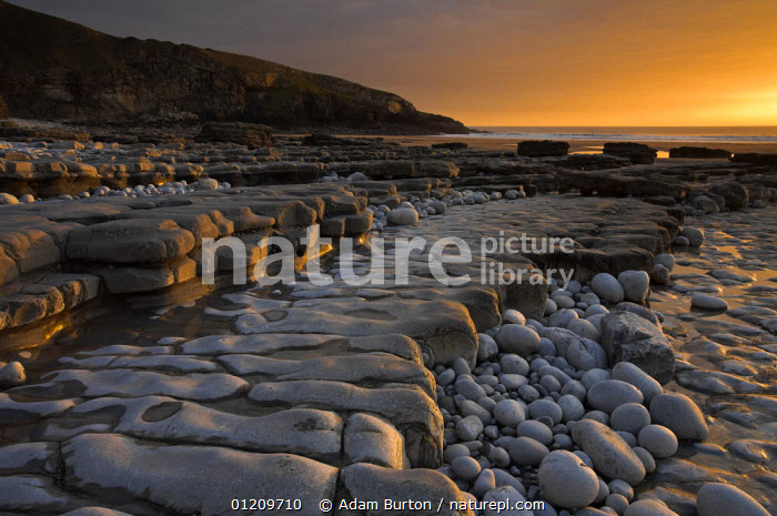 Pebbles, wave-cut platform and sedimentary cliffs at Dunraven Bay, Southerndown, Wales *NB: Not available for use on 2014 UK Trade Calendars  ,  CLIFFS,COASTS,EUROPE,GEOLOGY,LANDSCAPES,LAYERS,ROCK FORMATIONS,ROCKS,STRATA,SUNSET,UK,United Kingdom,British,WALES, United Kingdom, United Kingdom, United Kingdom  ,  Adam Burton