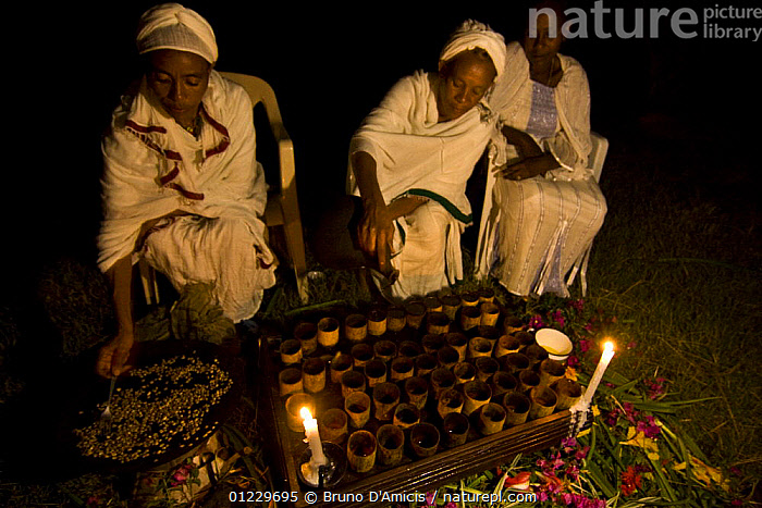 Ethiopian women preparing coffee (Coffea arabica) according to traditional ceremony. After roasting the coffee, this is pounded and boiled in terracotta pitcher,  Bonga, Kaffa Zone, Southern Ethiopia, East Africa December 2008, CANDLES,COOKING,CROPS,DICOTYLEDONS,EAST AFRICA,NIGHT,PLANTS,RUBIACEAE,THREE,TRADITIONAL,WOMEN,Africa, Bruno D'Amicis