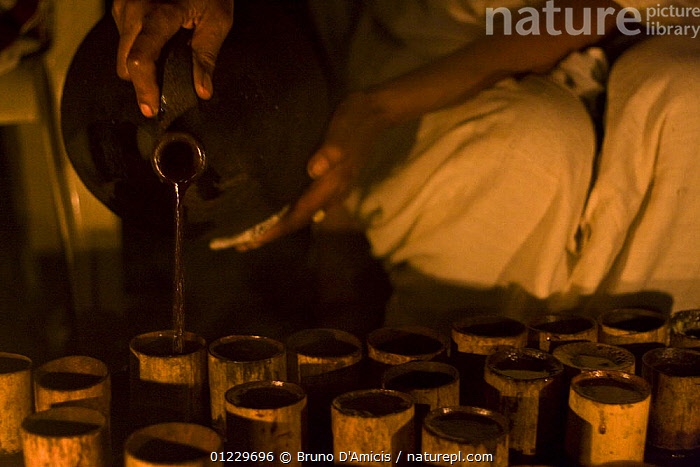 Coffee (Coffea arabica) poured from traditional terracotta pitcher into bamboo cups during ceremony, Bonga, Kaffa Zone, Southern Ethiopia, East Africa December 2008, CROPS,DICOTYLEDONS,EAST AFRICA,PEOPLE,PLANTS,POURING,RUBIACEAE,TRADITIONAL,Africa, Bruno D'Amicis