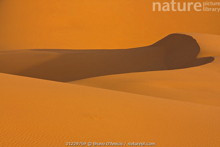 Dunes in the Sahara desert, Merzouga, Erg Chebbi, Southern Morocco, NW Africa, AFRICA,DESERTS,LANDSCAPES,NORTH AFRICA,ORANGE,PATTERNS,SAND DUNES, Bruno D'Amicis