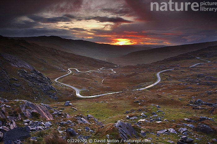 The road over the Healy Pass at dawn, Caha Mountains, Beara Peninsula, Co Cork, Ireland, October 2008, COUNTRYSIDE,DAWN,DRAMATIC,EUROPE,IRELAND,LANDSCAPES,MOORLAND,MOUNTAINS,ROADS,SUNRISE,CONCEPTS, David Noton