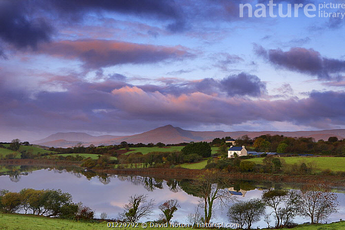 Dawn over Bantry Bay, nr Bantry, County Cork, Ireland, October 2008, BUILDINGS,CALM,COASTS,COUNTRYSIDE,DAWN,EUROPE,IRELAND,LANDSCAPES,PEACEFUL,REFLECTIONS,SUNRISE,WATER,Concepts, David Noton