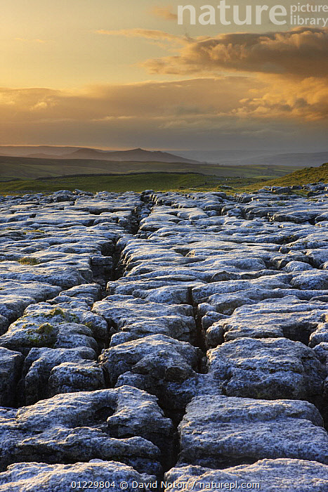 Frost on a limestone pavement at Ing Scar above Malham Cove, Yorkshire Dales National Park, Yorkshire, England, UK, October 2008, COUNTRYSIDE,ENGLAND,EROSION,EUROPE,FROST,GEOLOGY,LANDSCAPES,NP,RESERVE,ROCK FORMATIONS,UK,VERTICAL,Weather,National Park, United Kingdom, David Noton