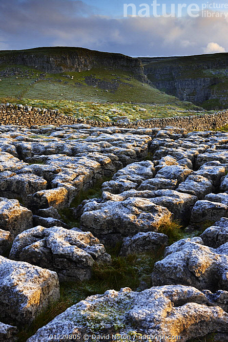 Frost on a limestone pavement at Ing Scar above Malham Cove, Yorkshire Dales National Park, Yorkshire, England, UK, October 2008, COUNTRYSIDE,EROSION,EUROPE,FROST,GEOLOGY,LANDSCAPES,NP,RESERVE,ROCK FORMATIONS,UK,VERTICAL,Weather,National Park, United Kingdom, David Noton