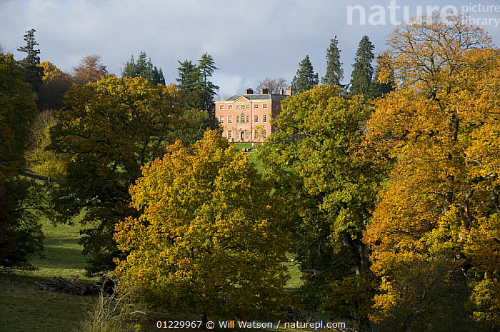 Brockhampton Hall and surrounding parkland in autumn, National Trust tenanted property, Herefordshire, England, November 2008, BUILDINGS,EUROPE,HISTORICAL,LANDSCAPES,Park,TREES,UK,PLANTS, United Kingdom, Will Watson