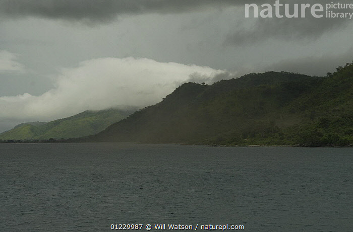 Swarms of lake flies (Chaoborus edulis) on Lake Malawi being blown ashore, Malawi. February 2008, CLOUDS,FLIES,INSECTS,LAKES,LANDSCAPES,mass,PESTS,SOUTHERN AFRICA,swarm,Weather,Invertebrates, Will Watson