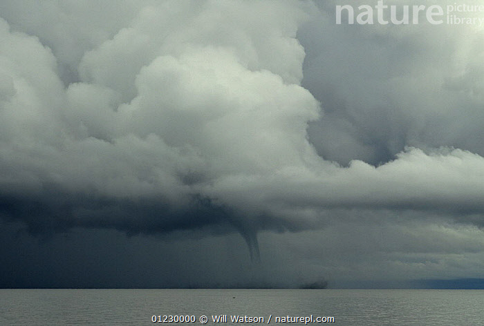 Waterspout and towering cumulus cloud over Lake Malawi, February 2008, Malawi., CLOUDS,dark,DRAMATIC,LAKES,LANDSCAPES,southern africa,SOUTHERN AFRICA,STORMS,tornado,WATER,WEATHER,CONCEPTS, Will Watson