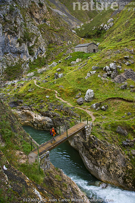 Hiker crossing a mountain stream on the Ruta del Cares path, Pico de Europa NP, Leon, Northern Spain   October 2006, BRIDGE ,BRIDGES,CANTABRIAN MOUNTAINS,EUROPE,FOOTPATH,FOOTPATHS,HIGH ANGLE SHOT,HIKING,LANDSCAPES,MOUNTAINS,NP,PATHS,PEOPLE,RESERVE,RIVERS,SPAIN,STREAMS,VERTICAL,WALKING,National Park, Juan Carlos Munoz