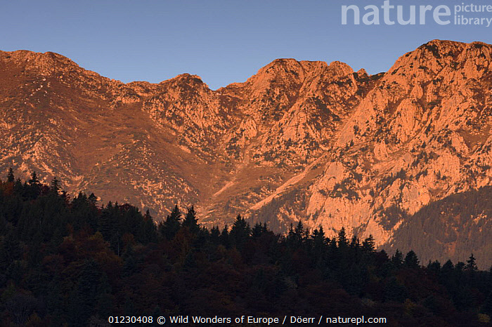 Morning light on the Piatra Craiului massif, Piatra Craiului National Park, Transylvania, Southern Carpathian Mountains, Romania, October 2008, CORNELIA DOERR,DAWN,EASTERN EUROPE,EUROPE,LANDSCAPES,LIMESTONE,MOUNTAINS,NP,RESERVE,ROCK FORMATIONS,TREES,WWE,National Park,Geology,PLANTS, Wild Wonders of Europe / Döerr