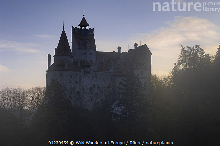 Silhouette of Castle Bran, Transylvania, Southern Carpathian Mountains, Romania, October 2008, BUILDINGS,CASTLES,CORNELIA DOERR,EASTERN EUROPE,EUROPE,LANDSCAPES,NP,SILHOUETTES,WWE,National Park, Wild Wonders of Europe / Döerr