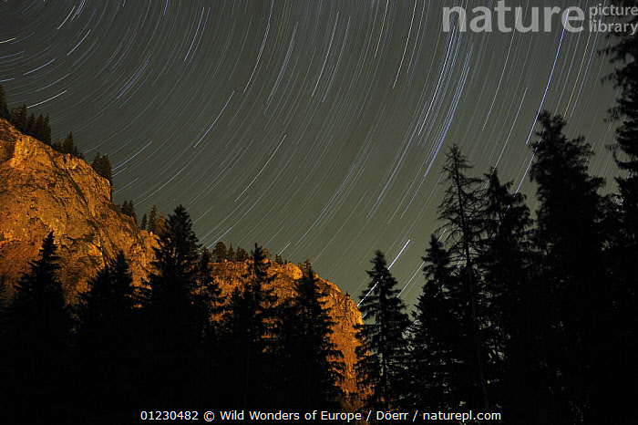 Mountains at night with star trails, Cheile Bicazului-Hasmas National Park, Carpathian Mountains, Transsylvania, Romania, October 2008, CORNELIA DOERR,EASTERN EUROPE,EUROPE,LANDSCAPES,MOUNTAINS,NIGHT,NP,ROCK FORMATIONS,SILHOUETTES,SKIES,STARS,TREES,WWE,National Park,Geology,PLANTS, Wild Wonders of Europe / Döerr