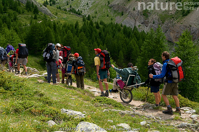 Hiking with handicapped people in the Alps, France, July 2008  ,  ADVENTURE,ALPINE,DISABILITY,DISABLED,FRANCE,GROUPS,LANDSCAPES,PEOPLE,RECREATION,WHEELCHAIR,WHEELCHAIRS,WOODLANDS,Europe  ,  Jean E. Roche