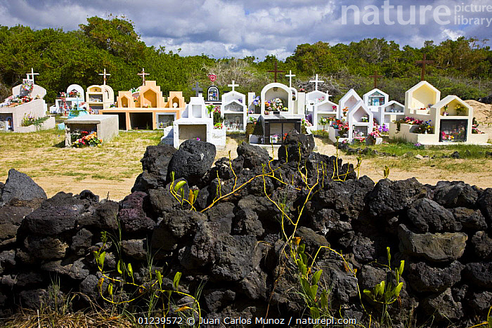 Cemetery on Isabela Island, Galapagos, January 2009  ,  CHRISTIANITY,GALAPAGOS,GRAVES,LANDSCAPES,SOUTH-AMERICA  ,  Juan Carlos Munoz