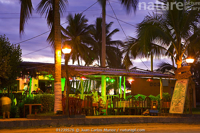 Restaurants in the main square of Puerto Villamil, Isabela Island, Galapagos, January 2009  ,  BUILDINGS,DUSK,GALAPAGOS,LANDSCAPES,LIGHTS,PEOPLE,TOURISM,TOWNS,TRADE,SOUTH-AMERICA  ,  Juan Carlos Munoz