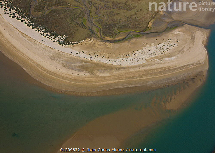 Aerial view of the coast and saltmarshes of the Bahia / Bay de Cadiz Natural Park, Andalucia, Spain, March 2008  ,  AERIALS,ARTY SHOTS,COASTS,LANDSCAPES,MARSHES,PATTERNS,RESERVE,SALTMARSHES,WETLANDS,Europe  ,  Juan Carlos Munoz