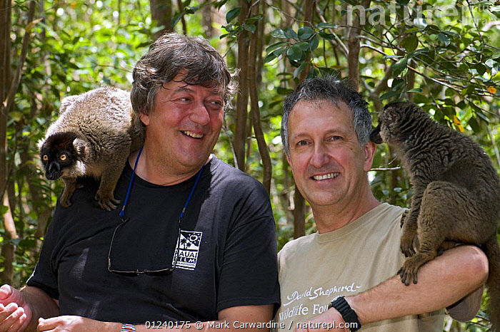 Stephen Fry and Mark Carwardine with Brown lemurs on Lemur Island in Andasibe-Mantadia National Park, eastern Madagascar, while filming for BBC TV series 'Last Chance to See', November 2008  ,  LEMURS,MADAGASCAR,PEOPLE,PORTRAITS,PRESENTER,RESERVE,TWO  ,  Mark Carwardine