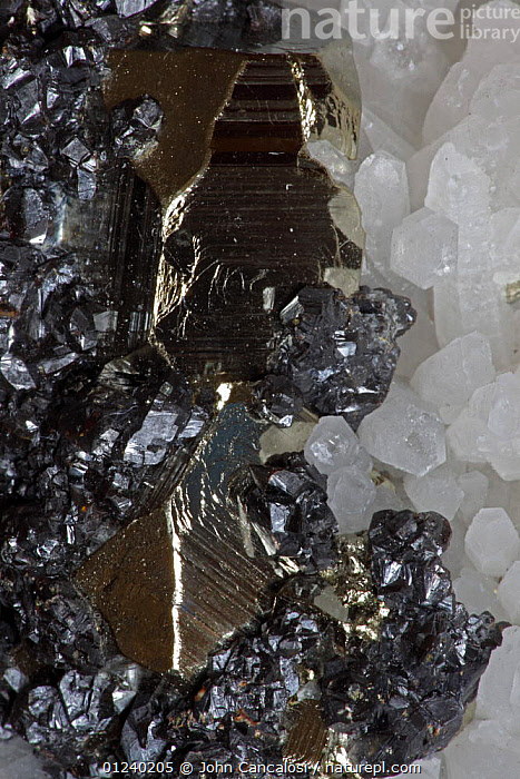 Sphalerite (dark color), Pyrite (golden color) and Quartz (white color) crystals, Peru, South America  ,  CLOSE UPS,CRYSTALS,GEOLOGY,GOLD,MINERALS,SHINY,SOUTH AMERICA,TEXTURE,VERTICAL  ,  John Cancalosi