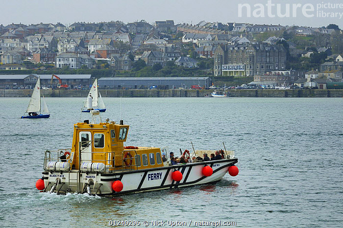 Rock to Padstow ferry crossing Camel Estuary, Cornwall, UK.  ,  BOATS,COASTS,ENGLAND,EUROPE,FERRIES,PASSENGER FERRIES,TOURISM,TOWNS,UK,WORKING BOATS, WORKING-BOATS , WORKING-BOATS , United Kingdom, WORKING-BOATS , WORKING-BOATS , United Kingdom  ,  Nick Upton