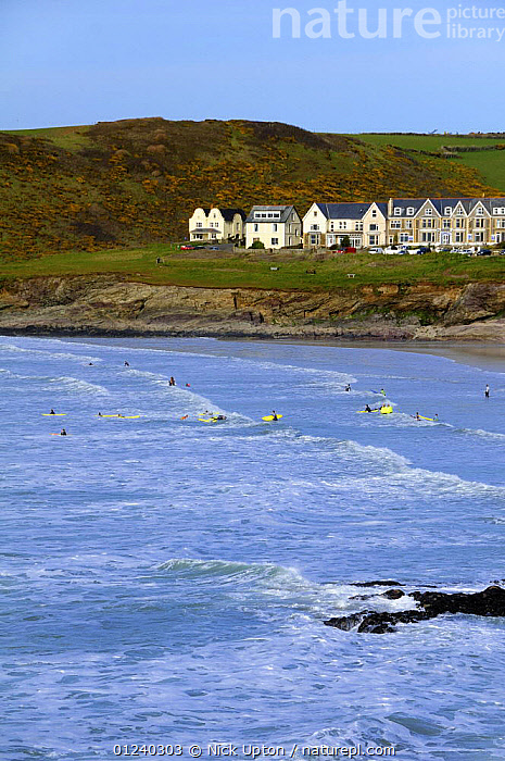 Surfers in the sea at Polzeath. Cornwall, UK. Blue Flag Beach.  ,  BEACHES,BUILDINGS,COASTS,ENGLAND,EUROPE,HOMES,LANDSCAPES,PEOPLE,SURFING,UK,VERTICAL,SPORTS, WATERSPORTS, United Kingdom, WATERSPORTS, United Kingdom  ,  Nick Upton
