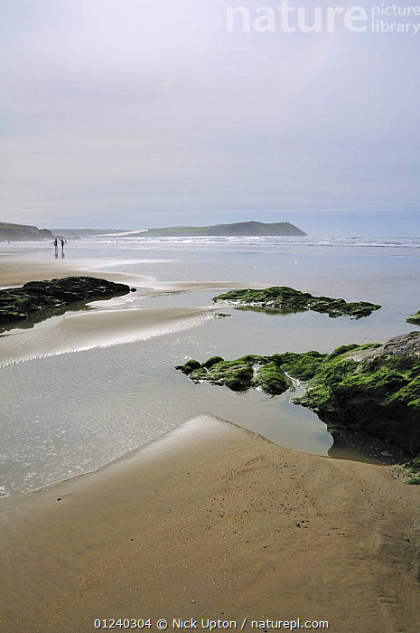 Surfers and rock pools on Polzeath beach. Cornwall, UK. Blue Flag Beach.  ,  ATMOSPHERIC,BEACHES,COASTS,ENGLAND,EUROPE,LANDSCAPES,SILVERY,TIDEPOOLS,UK,VERTICAL, United Kingdom, United Kingdom  ,  Nick Upton
