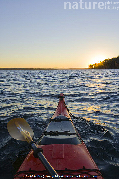 A kayak at dawn on Lake Winnipesauke in Meredith, New Hampshire, USA. October 2008, ABOARD,AUTUMN,BOATS,BOWS,CANOEING,FOREDECKS,KAYAKING,KAYAKS,LAKES,LANDSCAPES,LEISURE,NEW ENGLAND,PEACEFUL,USA,VERTICAL,SPORTS, WATERSPORTS, WATERSPORTS,Concepts,North America, WATERSPORTS, WATERSPORTS, Jerry Monkman