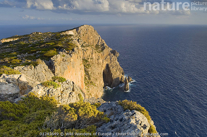 Coast, Antikythera island, Greece, September 2008, CLIFFS,COASTS,EUROPE,GREECE,LANDSCAPES,MEDITERRANEAN,SEA,STEFANO UNTERTHINER,WWE,Geology, Wild Wonders of Europe / Unterthiner
