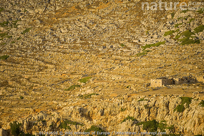 Ruins of a building in a rock strewn landscape, Antikythera island, Greece, September 2008, BUILDINGS,EUROPE,GREECE,LANDSCAPES,ROCKS,STEFANO UNTERTHINER,WWE, Wild Wonders of Europe / Unterthiner